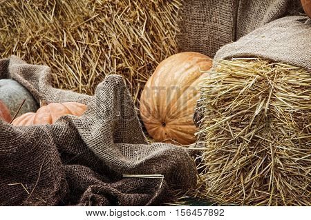 Thanksgiving Display.Pumpkins and Gourds among bale of straw and burlap sacks.Toned image.