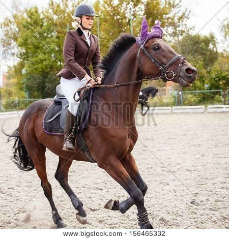 Young Female Rider On Equestrian Competition