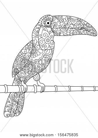 Toucan animal coloring book for adults vector illustration. Anti-stress coloring for adult. Zentangle style. Black and white lines. Lace pattern