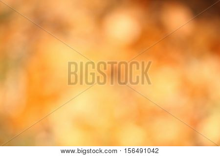 Abstract autumn background defocused picture. Background with bright gold and orange color