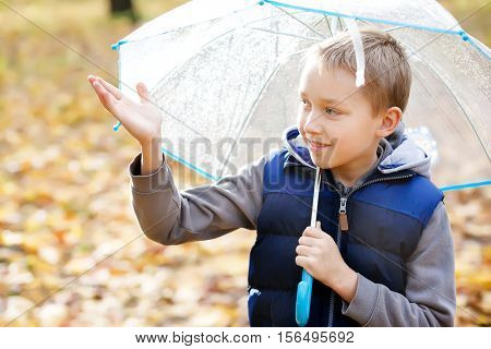 boy with a transparent umbrella in autumn park
