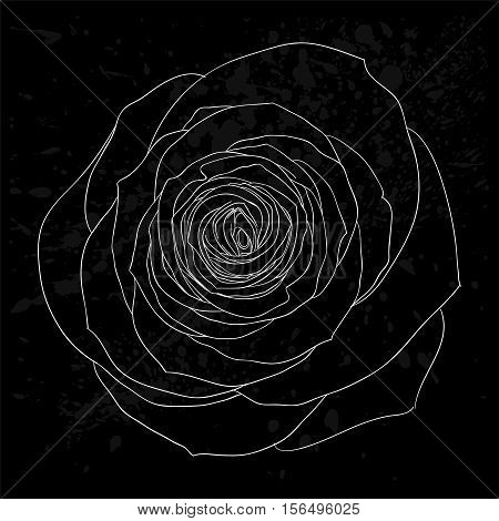 beautiful black and white rose outline with gray spots on a black background. design for greeting card and invitation of the wedding birthday Valentine's Day mother's day and other seasonal holiday