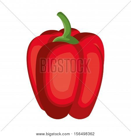 paprica fresh vegetable isolated icon vector illustration design
