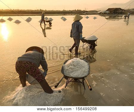 Salt Fields In Ninh Hoa, Vietnam