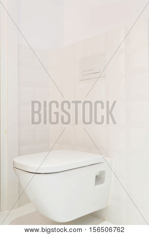 Toilet In Modern, Bright House