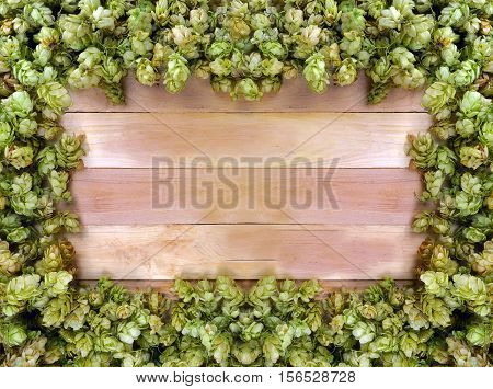 Frame of hop cones with space for text. Signboard. Ingredients. Medicinal herbs. Brewing. Concept.