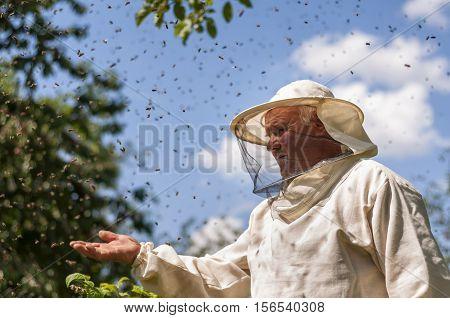 beekeeper and bee swarm apiary beehive honey