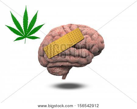 Wounded Brain with Marijuana Leaf   3D Render