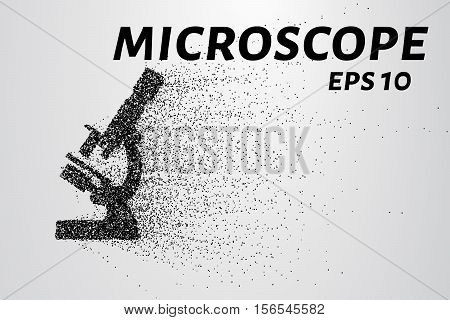 The microscope of the particles. the microscope consists of small circles and dots. Vector illustration
