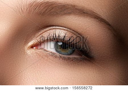 Eye Makeup. Beautiful Eyes Make-up. Holiday Makeup Detail. Long