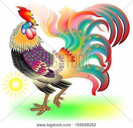 Illustration of beautiful fantasy cock at sunrise, vector cartoon image.