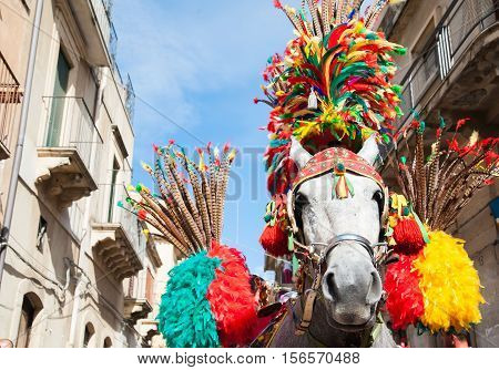 Closeup view of a horse head of a sicilian cart and its ornamental harness during a folk festival