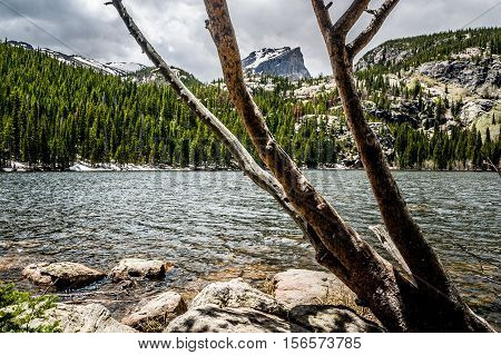 Hallett Peak, framed by the branches of a bare tree, is seen from the near shore of Bear Lake in Rocky Mountain National Park