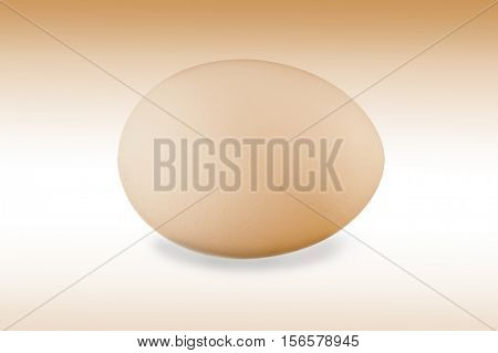 Close-up image of Avocado studio isolated on white background
