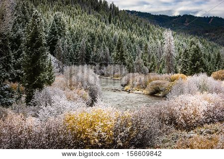 Beginning Of Winter Easley Creek Idaho