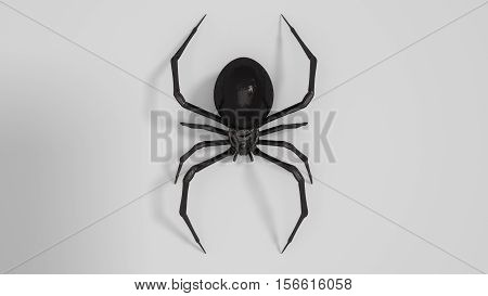 Dangerous Black widow spider 3d render on white background