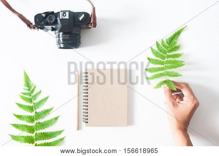 Woman's hand with fern leaf camera notebook and pencil flat lay isolated on white background