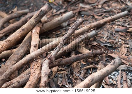 Pile of firewood. Preparation of firewood for the winter. Background.