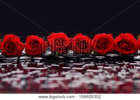 Row of Red rose and therapy stones