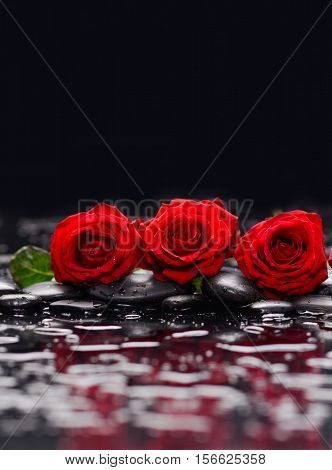Three Red rose and therapy stones