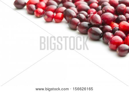 The tasty american cranberries isolated on white background.