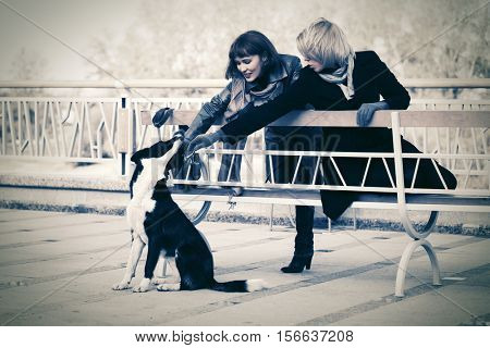 Two young women and a dog on city street. Female fashion model outdoor