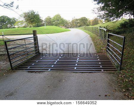 Cattle Grid Entrance