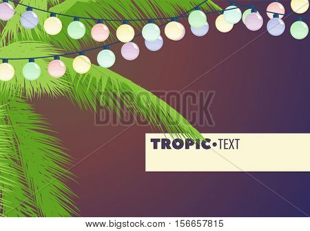 Leaves of palm trees decorated with garland with colored place for your inscription