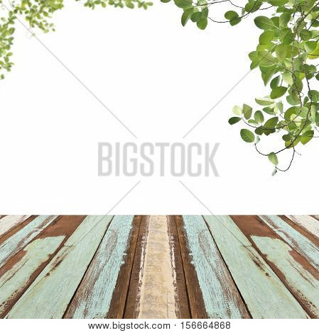 Wooden floor with green leaves for background