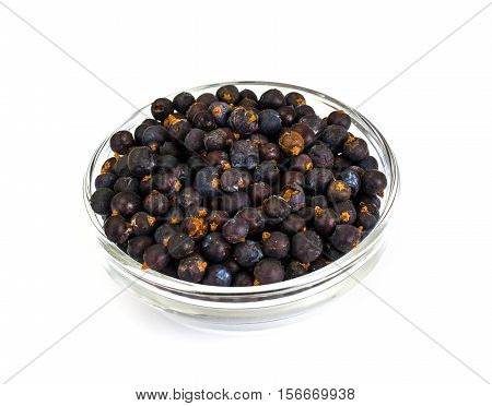 Juniper in a Glass Bowl on a White Background