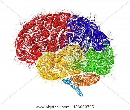 Concept of neural network. Тeural network in form of brain with colored zones thinking isolated on a white background. 3d illustration