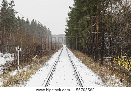 winter railroad track diminishing into a distant among the forest