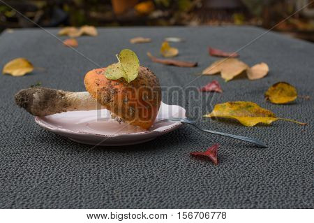 likable amanita on the table with lot of leafs