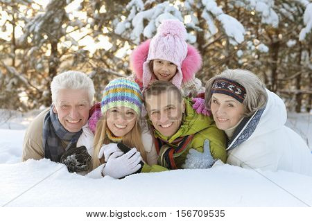 Big happy family having fun in snow covered winter park