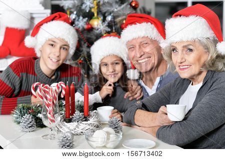 Portrait of happy grandparents with their grandchildren in Santa hats celebrating Christmas at home, drinking tea and looking at camera