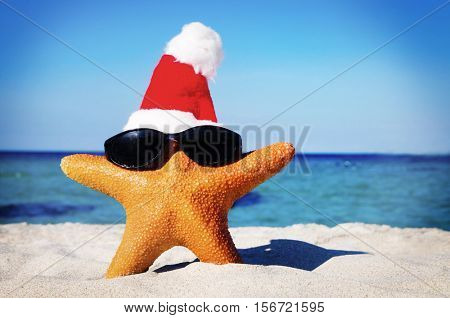 Wonderful Christmas on the Beach StarFish Concept