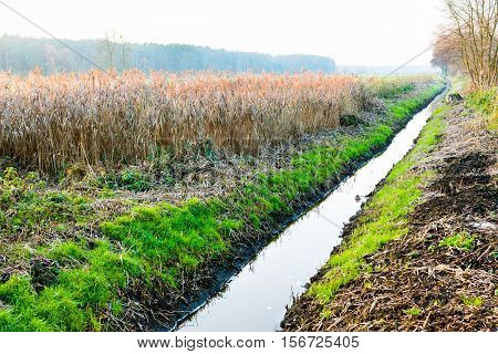 drainage ditch channel to save lowland fields from flooding