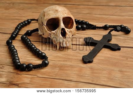 Vervet monkey skull with rosary beads isolated on a wooden background