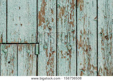 Old wall of wooden planks with metal rivets, covered peeling paint