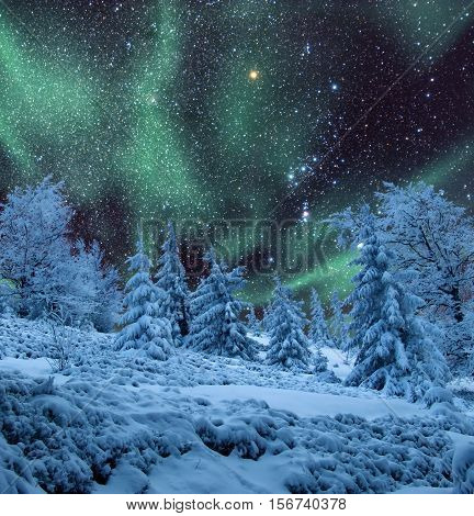 Starry night sky with northern lights over winter forest