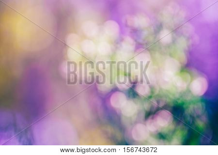 Beautiful dreamy magic pink white green abstract colorful blurry background soft selective focus copyspace for text cold colors tone cinematic effect.
