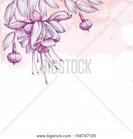 Fuchsia flower, leaves and buds on the textured background with blots in pastel colors. Greeting card with empty place for text. Hatching floral elements.