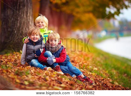 Three Handsome Kids, Friends Together In Autumn Park