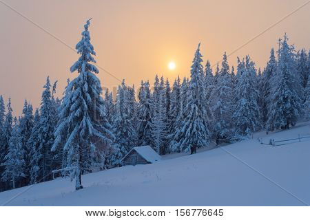 Christmas landscape with fairytale wooden house in the forest. Beautiful winter sunset with fog. Fir trees in the snow