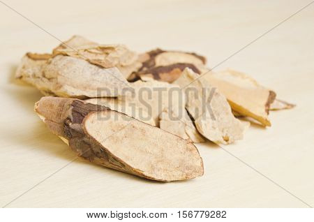 Trigonostemon Reidioides Kurz Craib Isolated On Wood