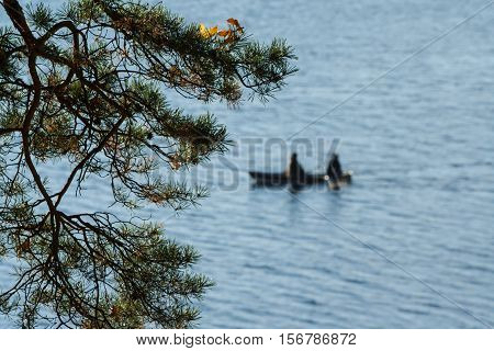 against the background of pine branches lake and the boat in which two people sit, blue water, green branches, people dressed up warm, autumn, sunny day, walking away boat, skiff, pleasure boat,