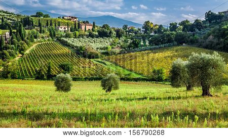 View Of A Small Village In Tuscany