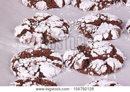 Home-made chocolate crinkle cookies fresh out of the oven after baking on parchment paper