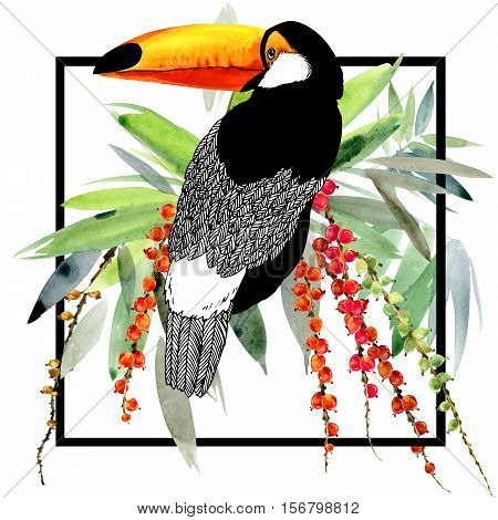 toucan illustration. Exotic bird. tropical plant. watercolor tropical background.