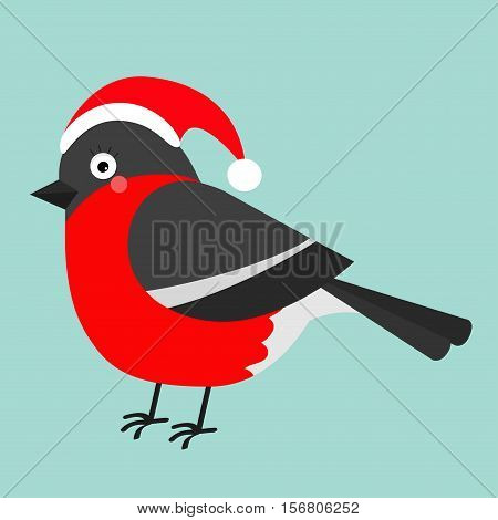 Bullfinch winter red feather bird. Santa hat. Cute cartoon funny character. Baby collection. Flat design. Isolated. White background. Vector illustration